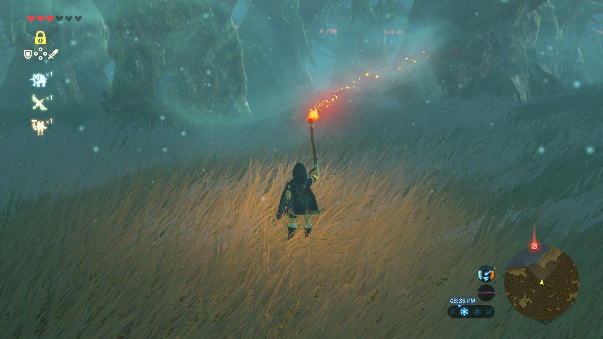 The Legend of Zelda: Breath of the Wild - Link sostiene una antorcha en un campo
