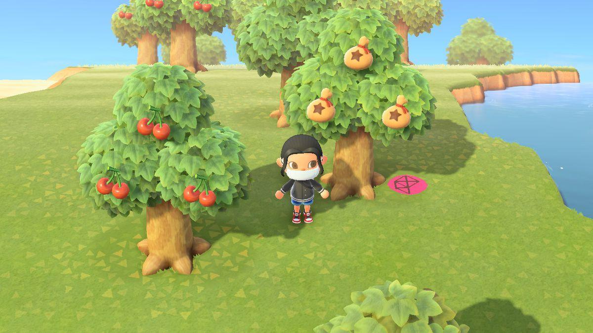 Delante de un árbol del dinero en Animal Crossing New Horizons