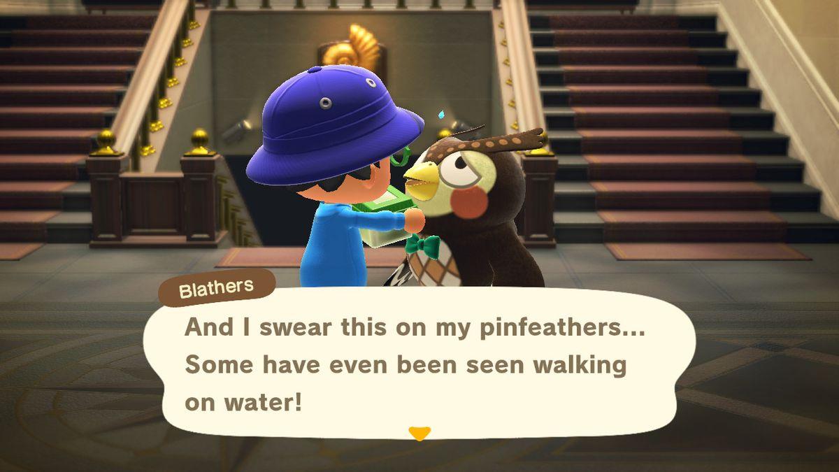 Blathers habla sobre insectos en Animal Crossing: New Horizons
