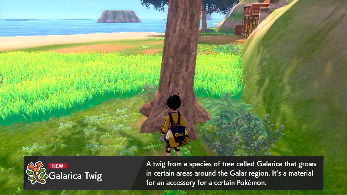 Un entrenador Pokémon frente a un árbol.  Hay un consejo que explica qué es una Galarica Twig