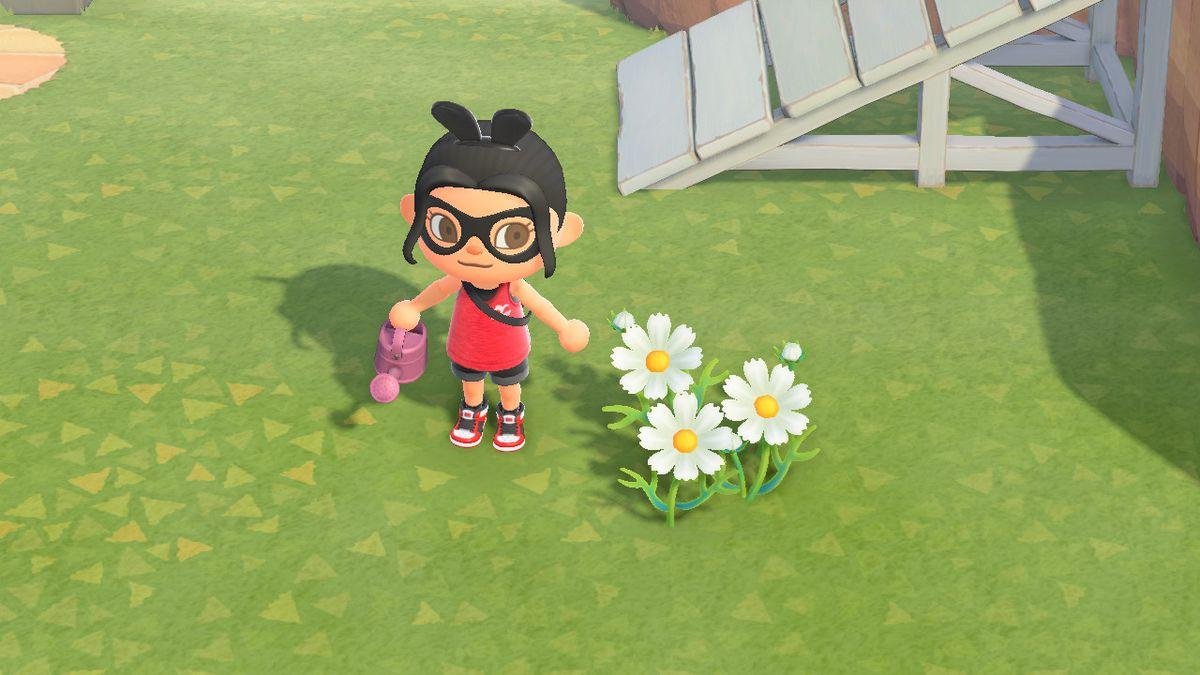 Un personaje de Animal Crossing se encuentra junto a un cosmos blanco