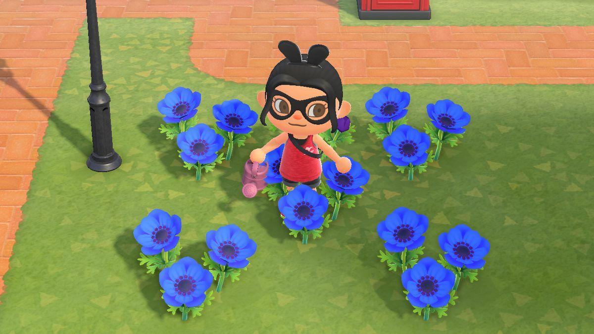 Un personaje de Animal Crossing está parado alrededor de un ramo de flores de viento azul