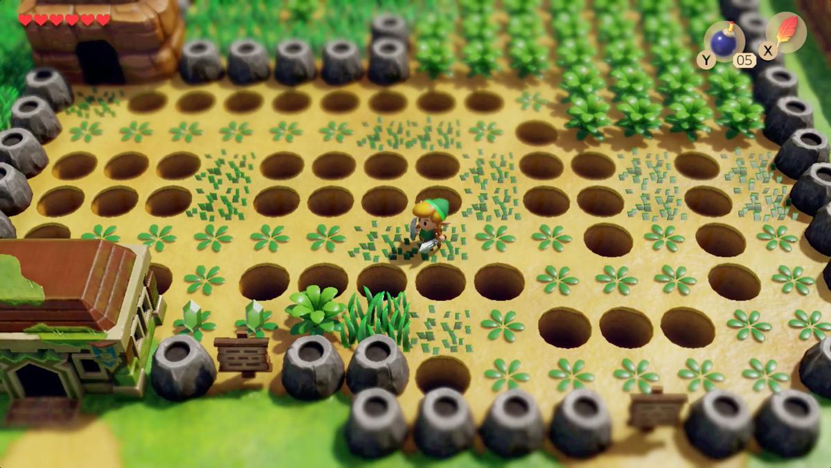 Link's Awakening Richard Pothole Field cortó las plantas para encontrar un camino seguro