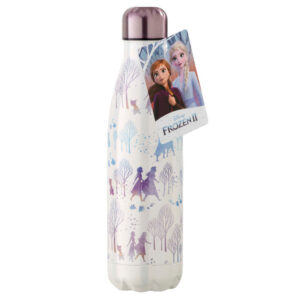 Botella metal Frozen 2 Disney